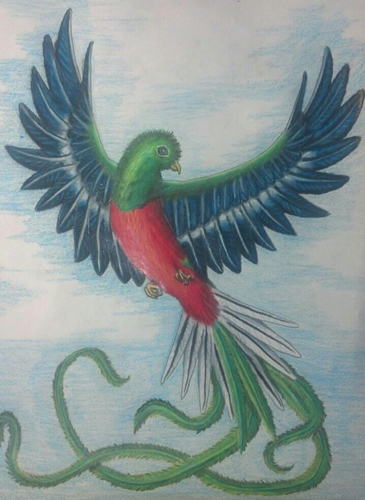 Quetzal tattoo design