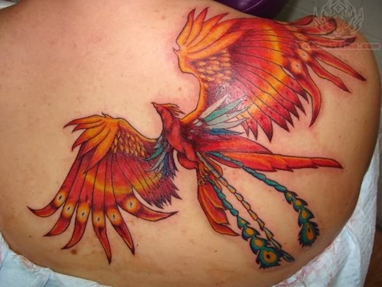 phoenix-tattoo-on-back-for-girls