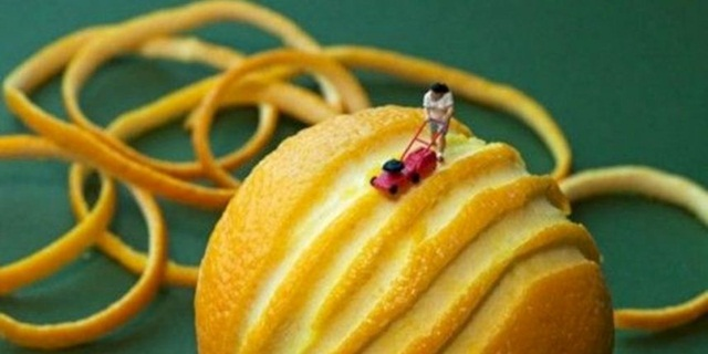 Creative Food Art (1)