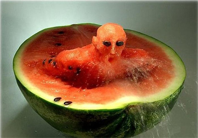 Creative Food Art (26)