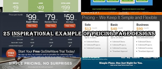 25 Inspirational Example of Pricing Page Designs
