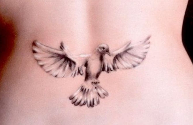 Dove Tattoo Designs For Girls (6)